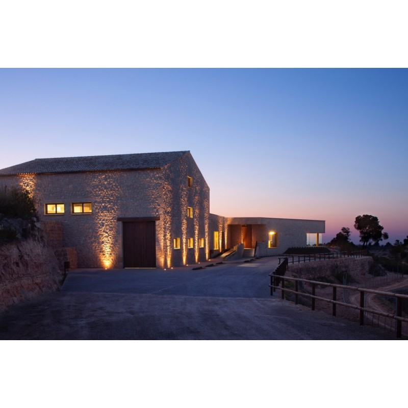 Gift voucher Clos Pons winery visit